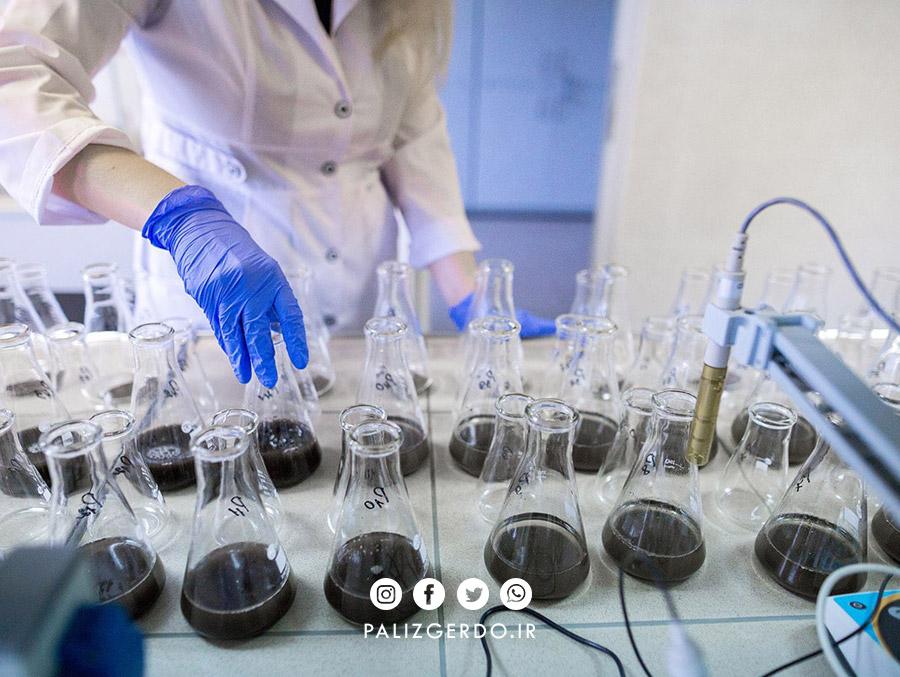انواع آزمون های خاک که قبل از کاشت نهال گردو ضرورت دارند