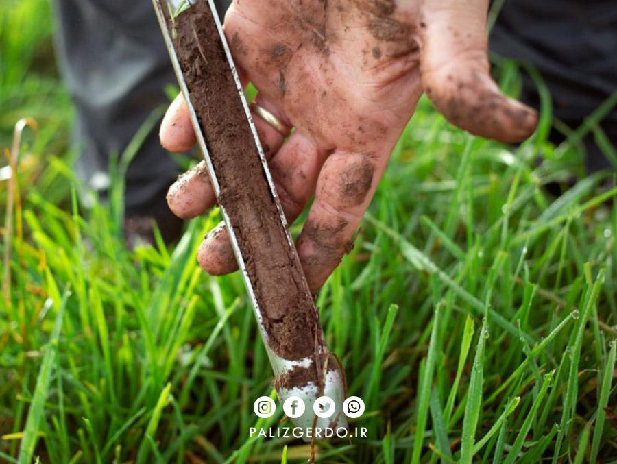مراحل نمونه برداری خاک برای آزمایش قبل از کاشت نهال گردو