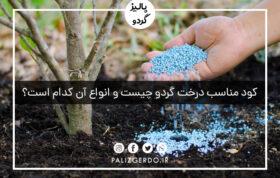 کود مناسب درخت گردو چیست و انواع آن کدام است؟