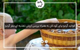 فواید گردو برای کودکان به همراه بررسی ارزش تغذیه ای مغز گردو