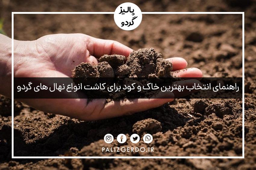 راهنمای انتخاب بهترین خاک و کود برای کاشت انواع نهال های گردو