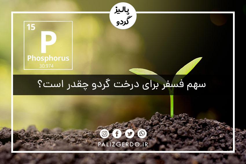 سهم فسفر برای درخت گردو چقدر است؟