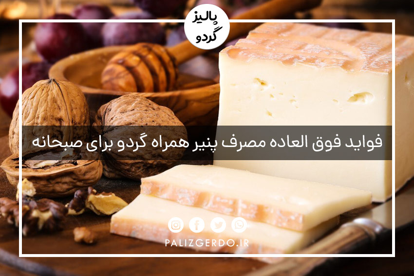 فواید مصرف پنیر همراه گردو