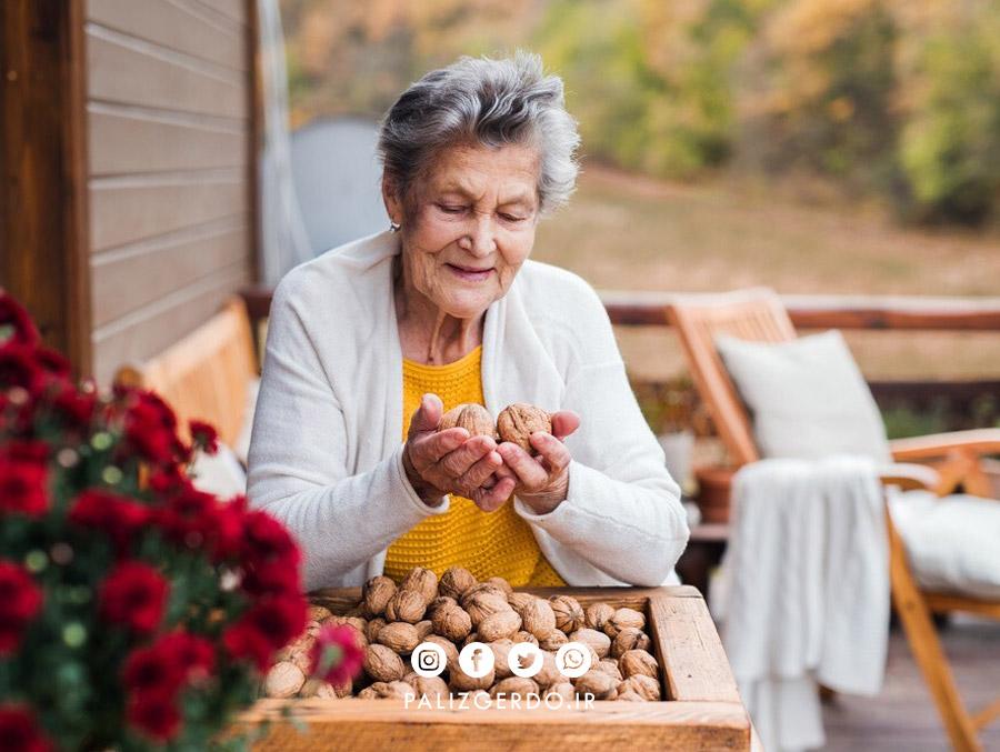 با متداول ترین خواص گردو برای سالمندان آشنا شویم