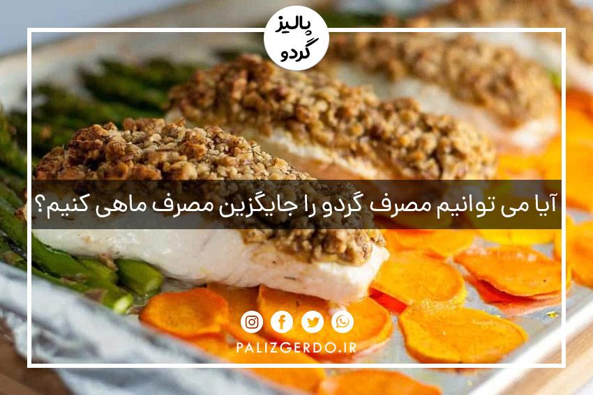 آیا می توانیم مصرف گردو را جایگزین مصرف ماهی کنیم؟
