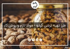 طرز تهیه ترشی گردو + مواد لازم و روش کار